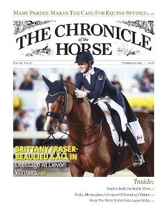 Horse and Rider cover web copy